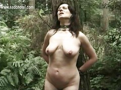 Slave tied to a tree is hit