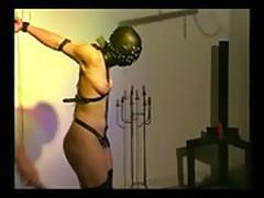 Cat-Torture bondage-1