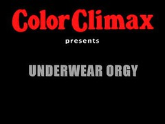 Color Climax - Underwear Orgy